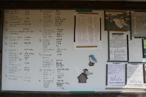 Kabutoyama19