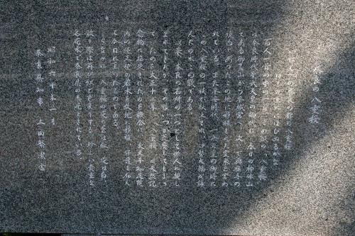 Naranoyaezakurahi