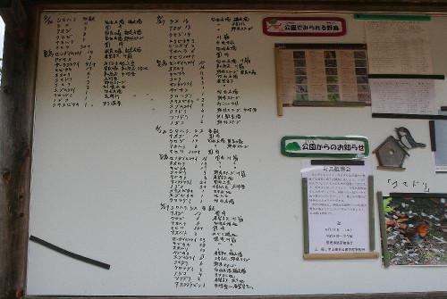 Kabutoyama113
