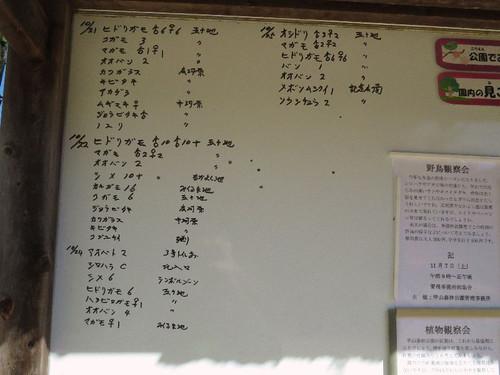 Kabutoyama15