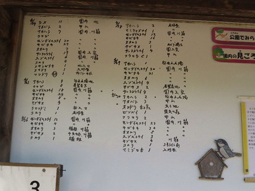 Kabutoyama51216
