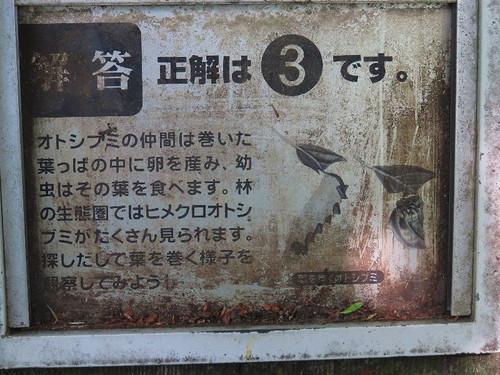Arimahujikouen0521