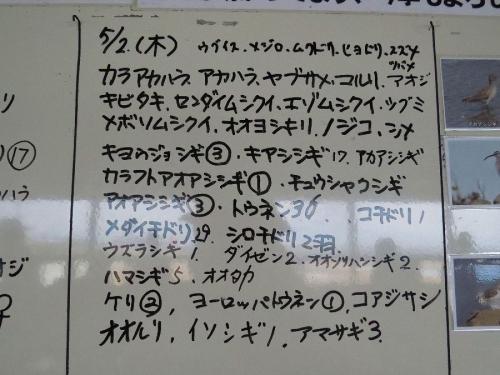 Nankouyatyouen0502